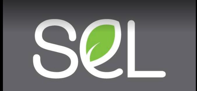 SEL Car Rental LLC in Dubai