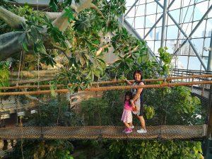 Green Planet is one of Dubai's Top 5 Indoor Activities